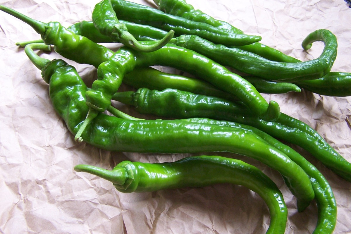 Cowhorn Peppers