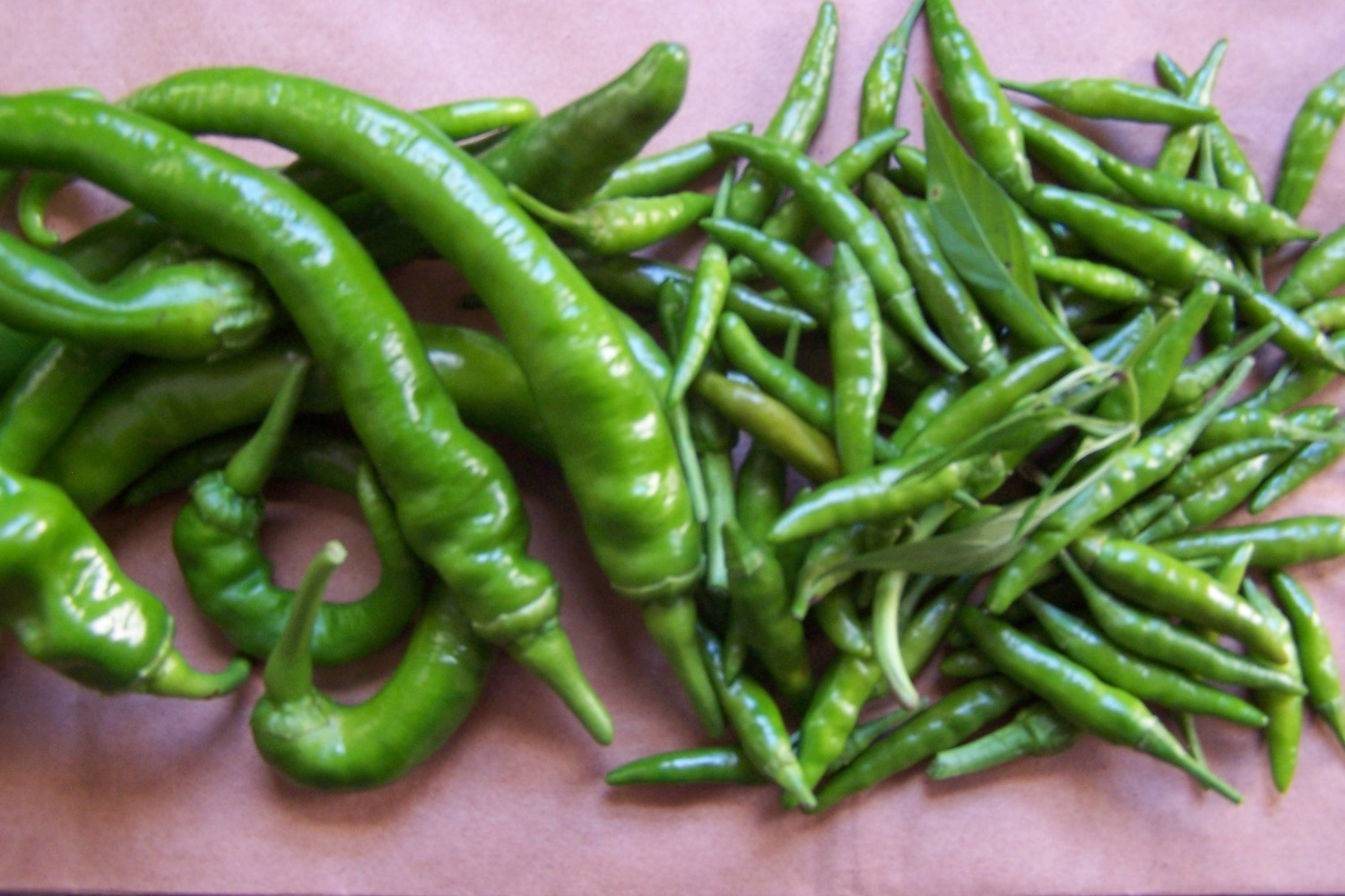 Fresh Green Cowhorn and Cayenne Peppers