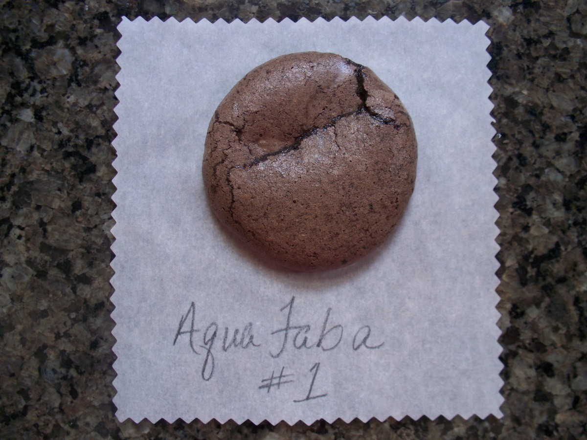 Aquafaba Cocoa Cookie