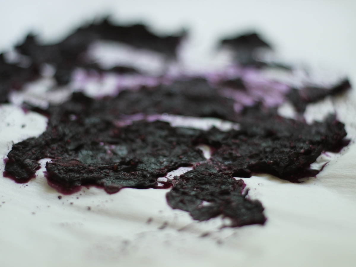Dried Blueberry Puree