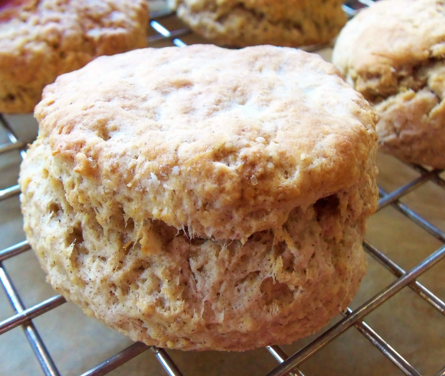 Cinnamon Buckwheat Biscuit