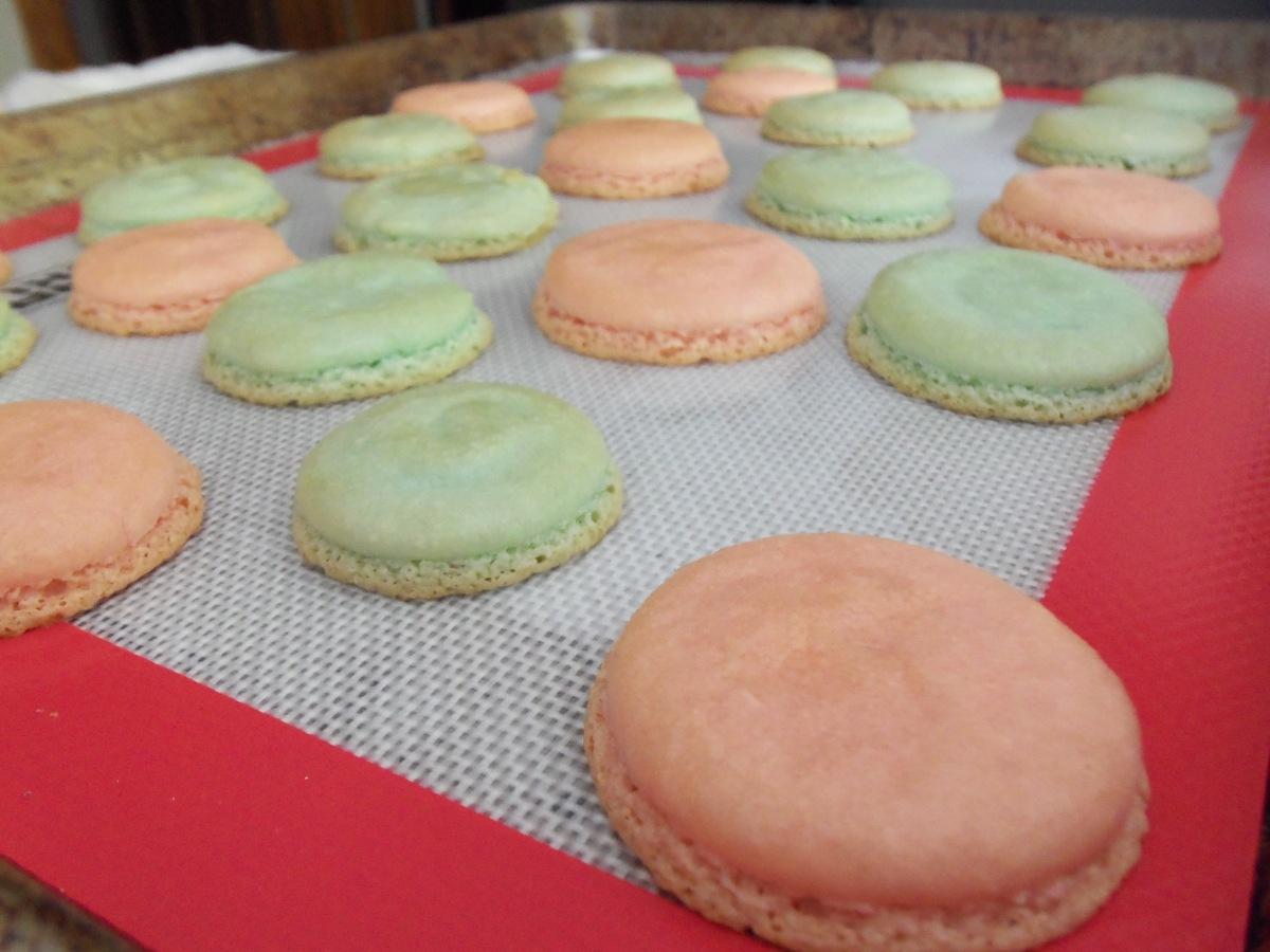 Macarons After Baking
