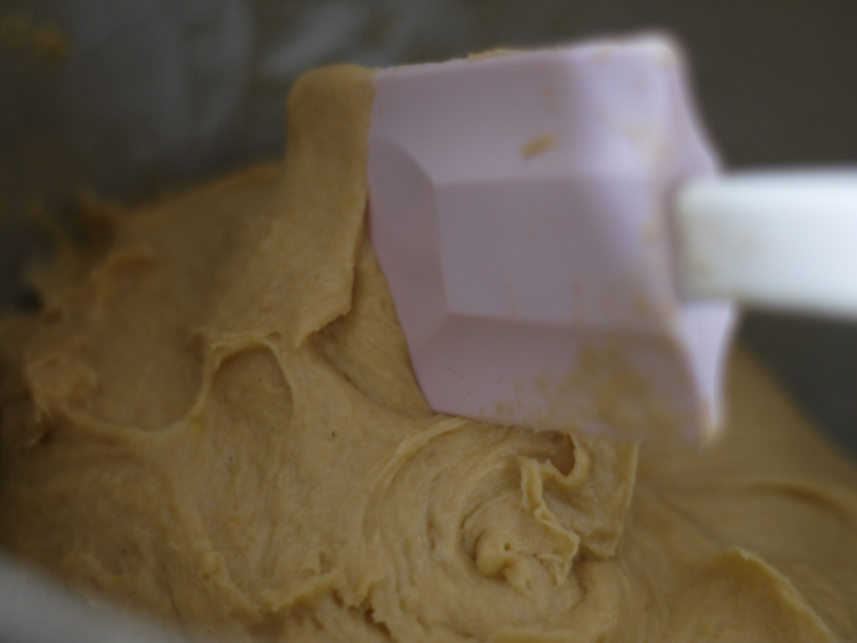 panettone-dough