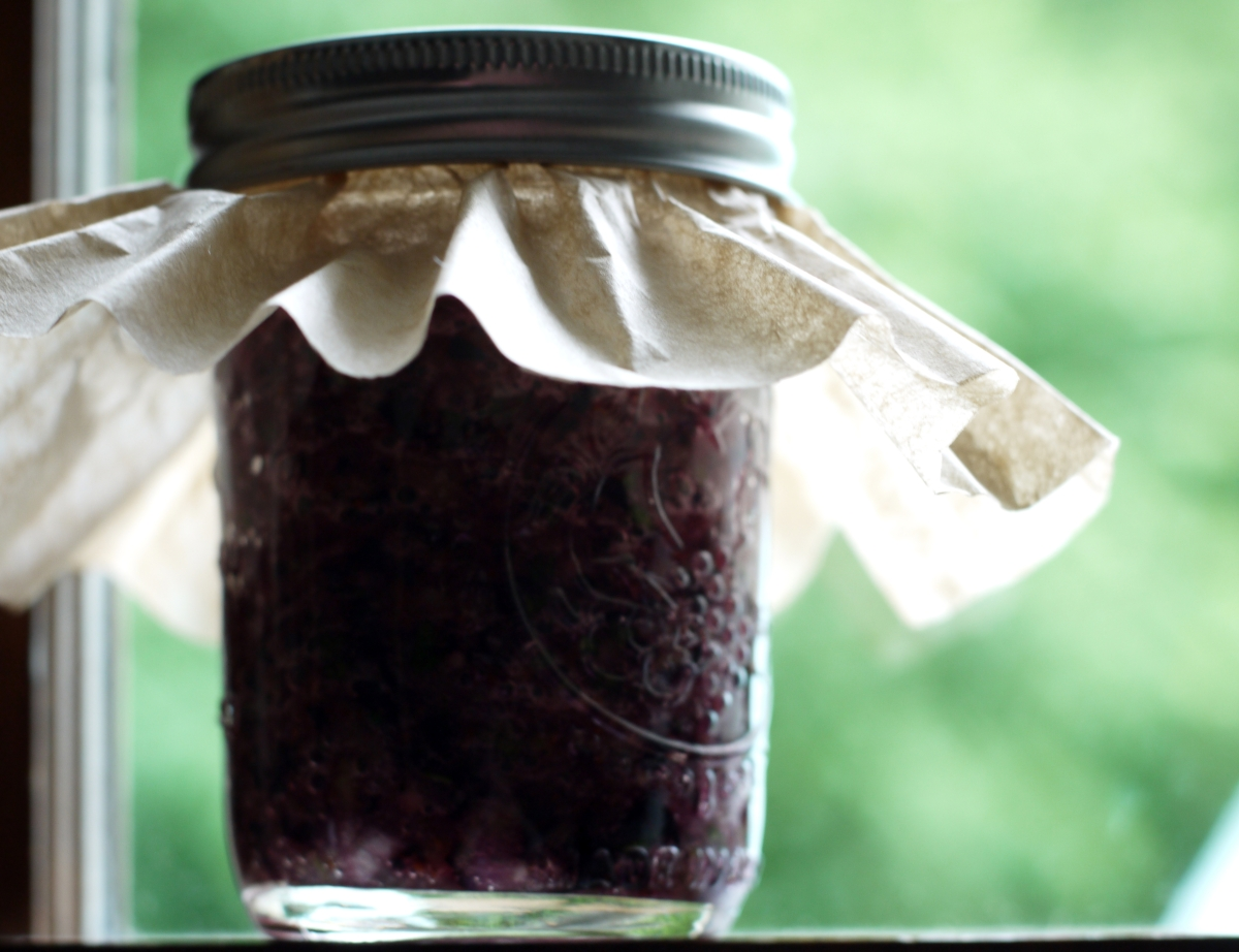 Curing Blueberry Hot Sauce
