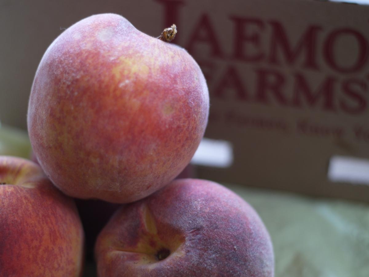 jaemor peaches